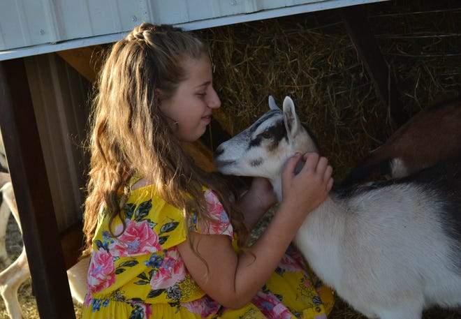 Gabrielle Giesler pets one of the many goats she helps raise on the family farm.