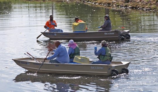 Boat crews with the city of San Angelo set out on the Concho River to collect thousands of dead fish Thursday, June 25, 2020.