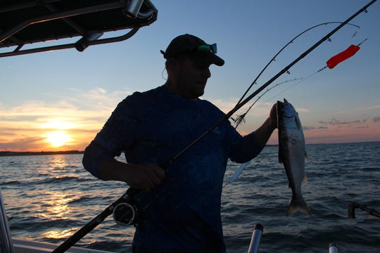 Brian Settele of Menomonee Falls lifts a coho salmon caught just before sunset on Lake Michigan near Oak Creek, Wis.