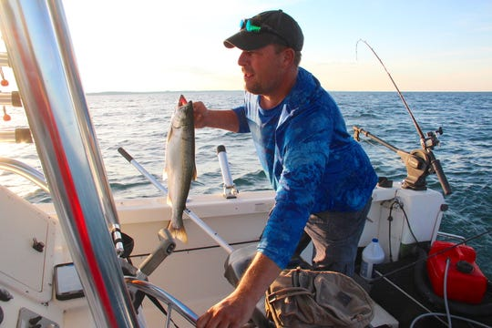 Brian Settele of Menomonee Falls holds a coho salmon that was just caught while he adjusts the steering wheel on his boat while fishing on Lake Michigan near Oak Creek.