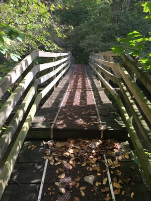 This bridge goes over Bush Creek at McVey Memorial Forest.