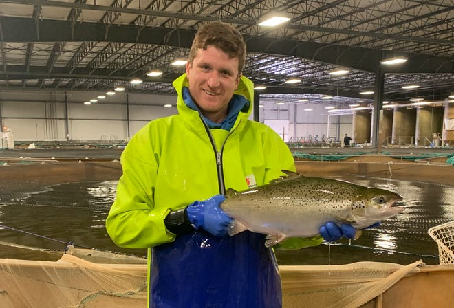 AquaBounty Technologies' Pete Bowyer holds one of the salmon being raised indoors at AquaBounty Technologies in Albany.