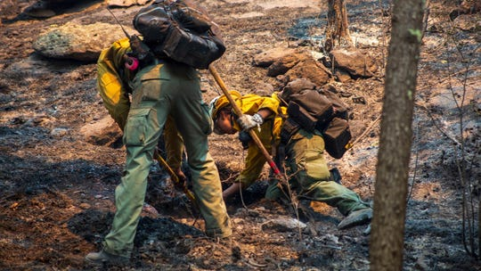 Wildland Fire crews work on the Tadpole Fire in the Gila National Forest June 20, 2020.