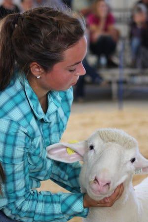 Youth and their families are finding ways to salvage a livestock show season that went off the tracks due to restrictions and cancelled fairs due to the coronavirus.