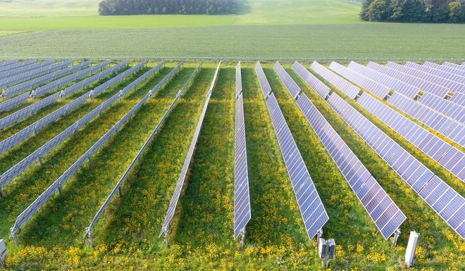 Solar farms with native plants to support pollinators such as bees and butterflies are growing in popularity nationwide and in Indiana. Here, Engie Solar's pollinator friendly solar farm near Downsville, Wisconsin shows what similar projects might look like in Indiana.