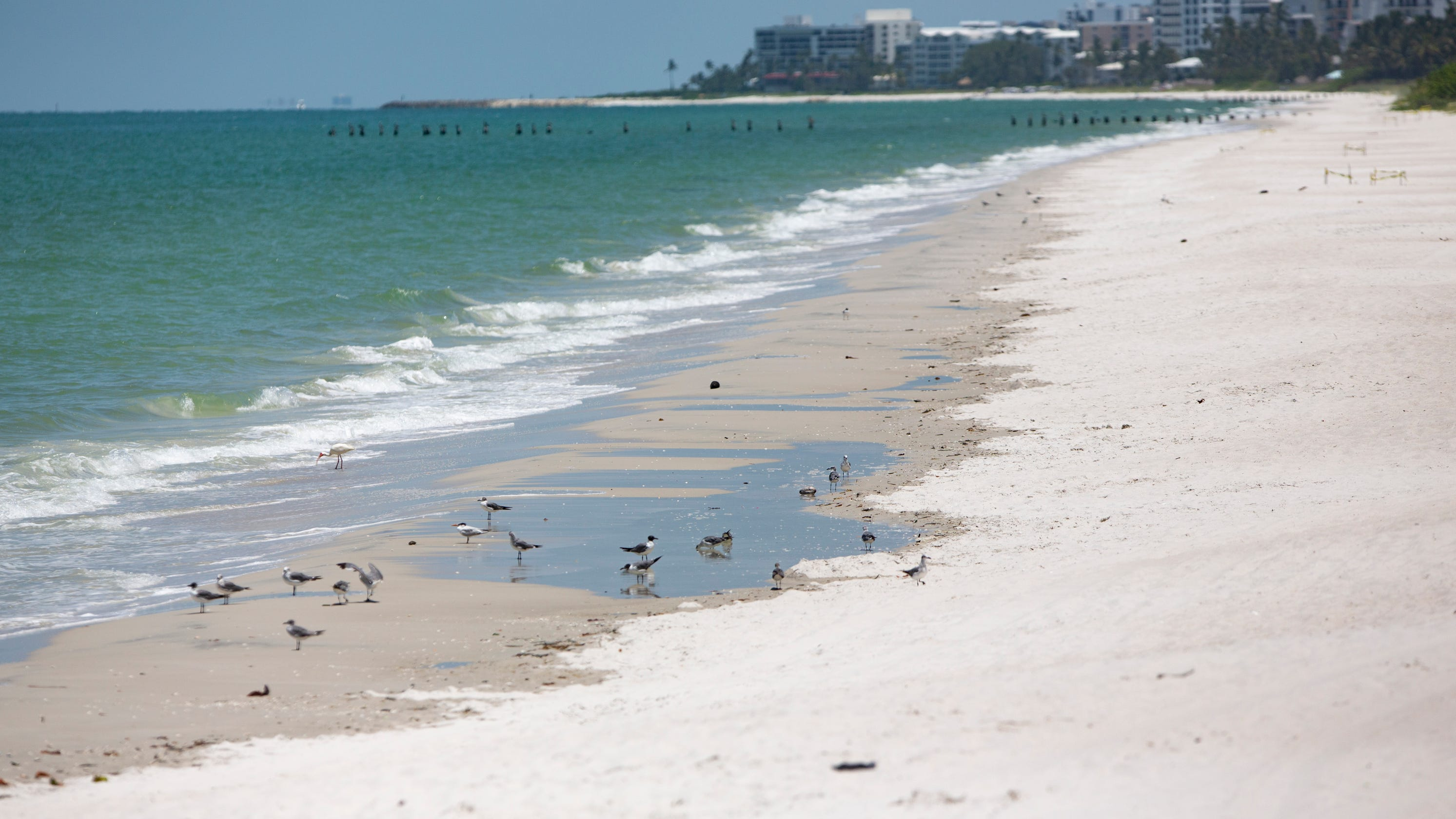 Collier Naples Marco Island Beaches Return To Regular Weekend Hours