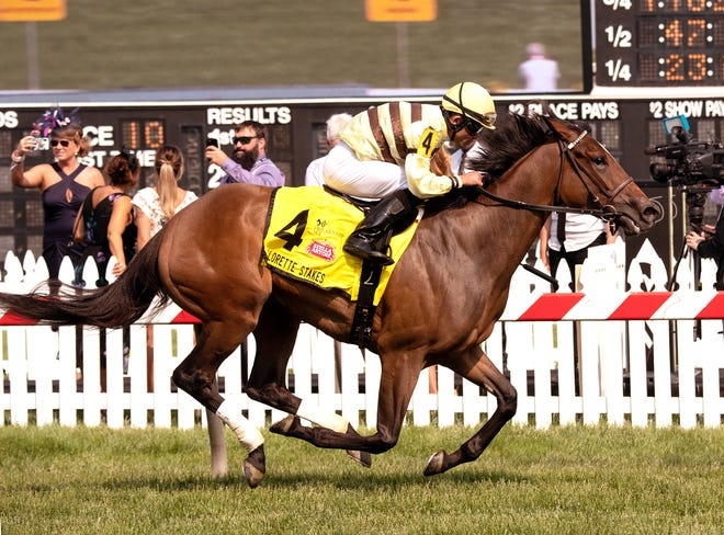 Mitchell Road winning the 2019 Gallorette at Pimlico Race Course.
