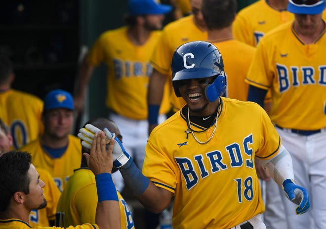 Canaries infielder Alay Lago celebrates in the dugout during the game against the Saints on Friday, July 3, 2020 in Sioux Falls, S.D.