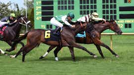 Talamo rides Mitchell Road to victory in Ellis Park Turf