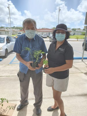 Summer Town resident Dock In Cho, left, receives seedlings from Marlyn Oberiano, Guåhan Sustainable Culture vice president.