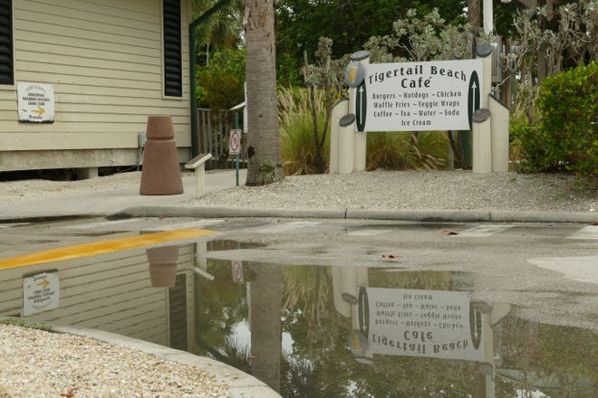 A Tigertail Beach Cafe sign reflects on water at the Tigertail Beach Park on July 6, 2020.