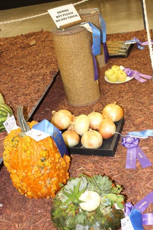 Coronavirus or no, vegetables and crops (like these from 2019) and livestock projects grow on, and the Kansas State Fair board has voted to continue plans for the 2020 event in Hutchinson.