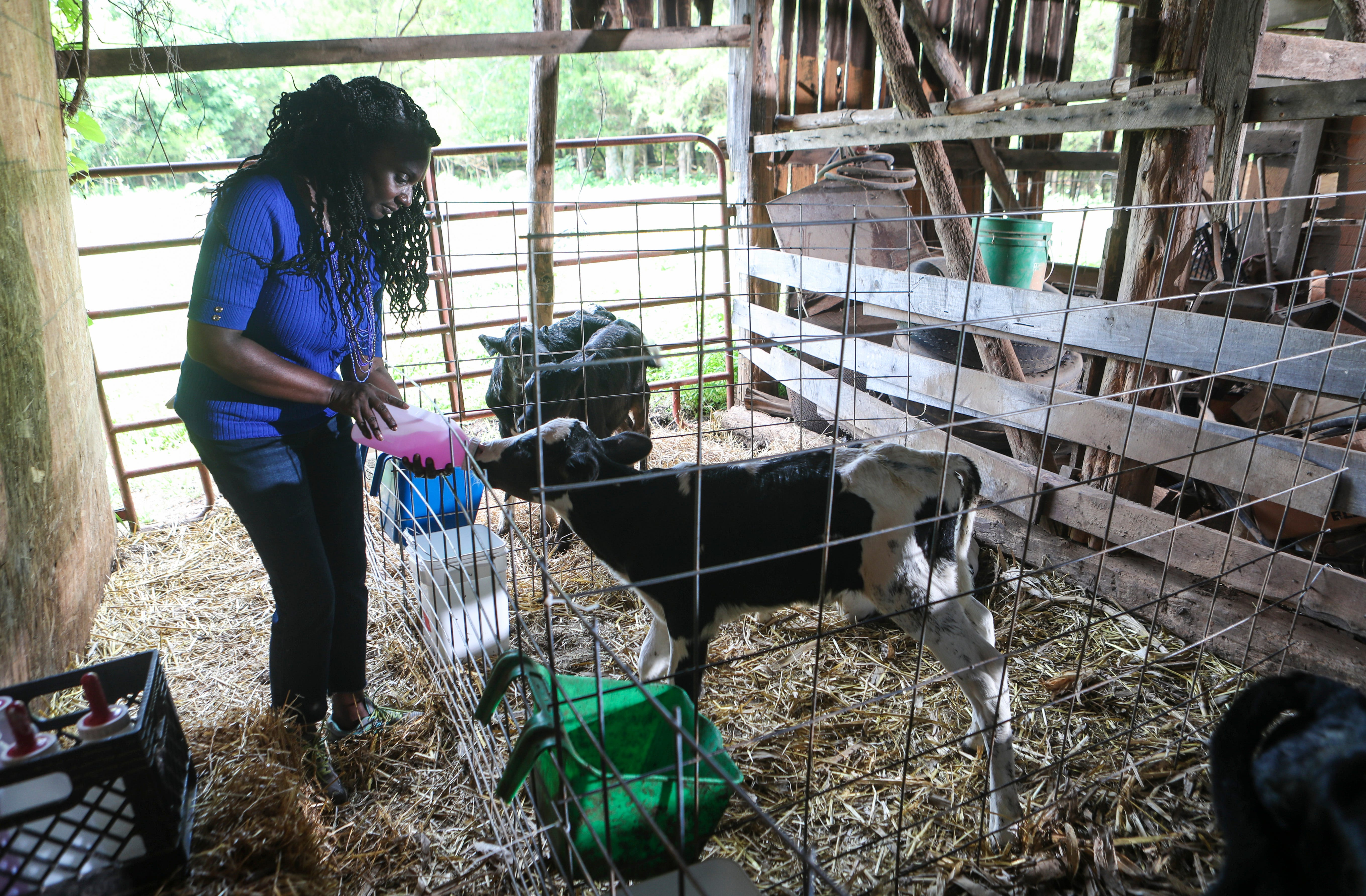 Agritourism Company Black Soil Is Connecting Black Kentucky Farmers