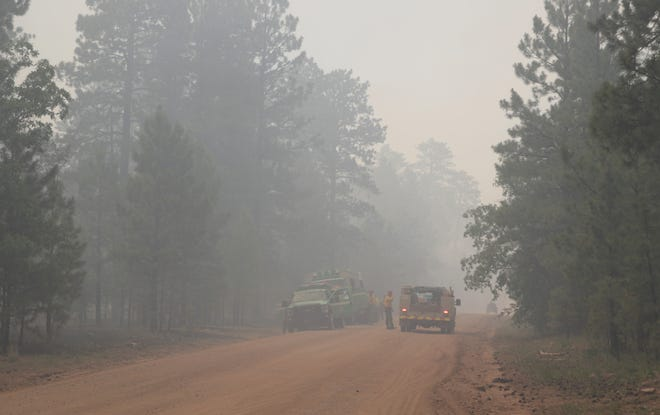 Wildland firefighters continue the response to the Wood Springs 2 fire on July 1 near Sawmill, Arizona.
