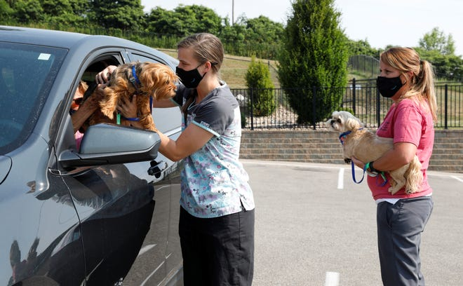 Cheyenne Howell collects Brandi from her owner Carol Myers, while Arin McConnell waits with Izzy as the two dogs get taken into the Fairfield Area Humane Society for check ups and shots on July 7. The FAHS has kept its clinic open, with pet owners calling ahead to schedule appointments, then waiting in the cars as the animals are worked with.