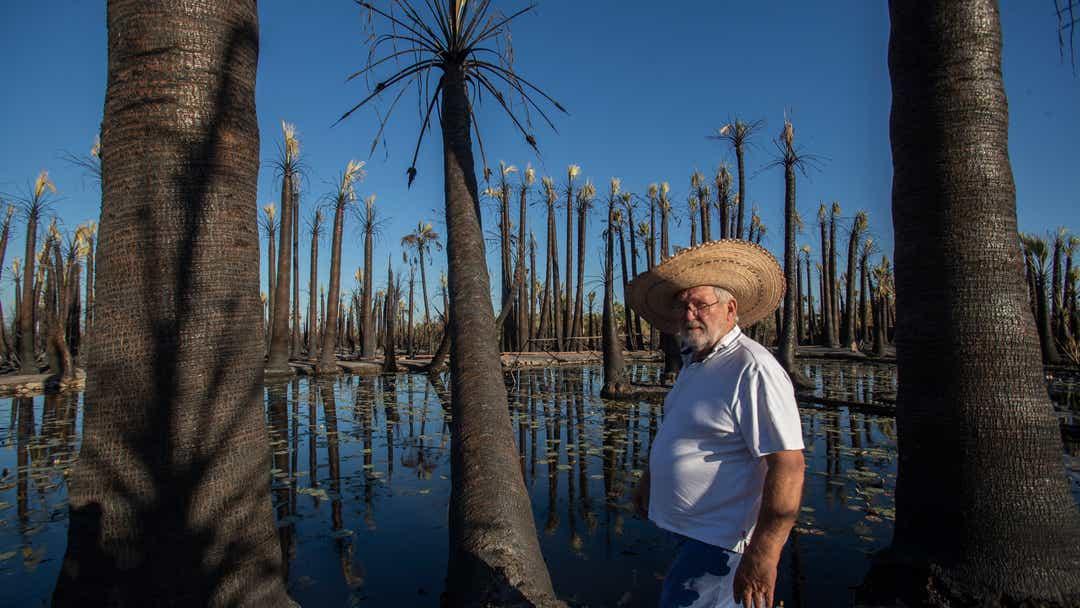 Birder oasis burns in Niland fire. Owner vows to rebuild
