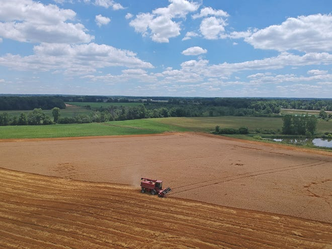 A wheat field near Nazor Road is harvested Tuesday afternoon in Crawford County.