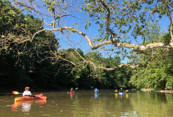 Kayakers paddle along the Mississinewa River.