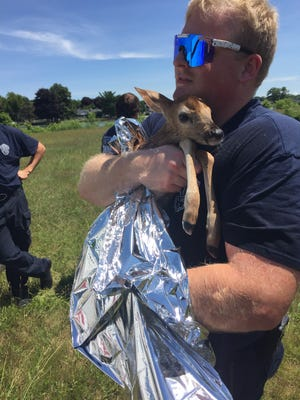 Port Huron Township Firefighter Chandler Martin holds a fawn pulled from the Black River on July 14, 2020.