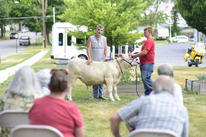 Colton Worden, left, 14, and Lane Bauer, 16, show off Smokey, a 1,235-pound Charolais beef steer, to a group of seniors Tuesday afternoon at the Crawford County Council on Aging.