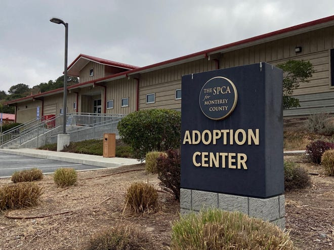 The outside of the SPCA of Monterey County. July 16, 2020.