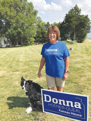 Donna Hoener-Queal is counting on her background in the judicial system and strong farm values to help her fix a broken system, if elected.