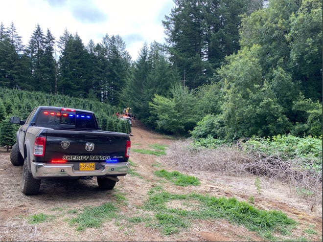 A Salem helicopter pilot died in a crash Friday morning after spraying a Christmas tree field.