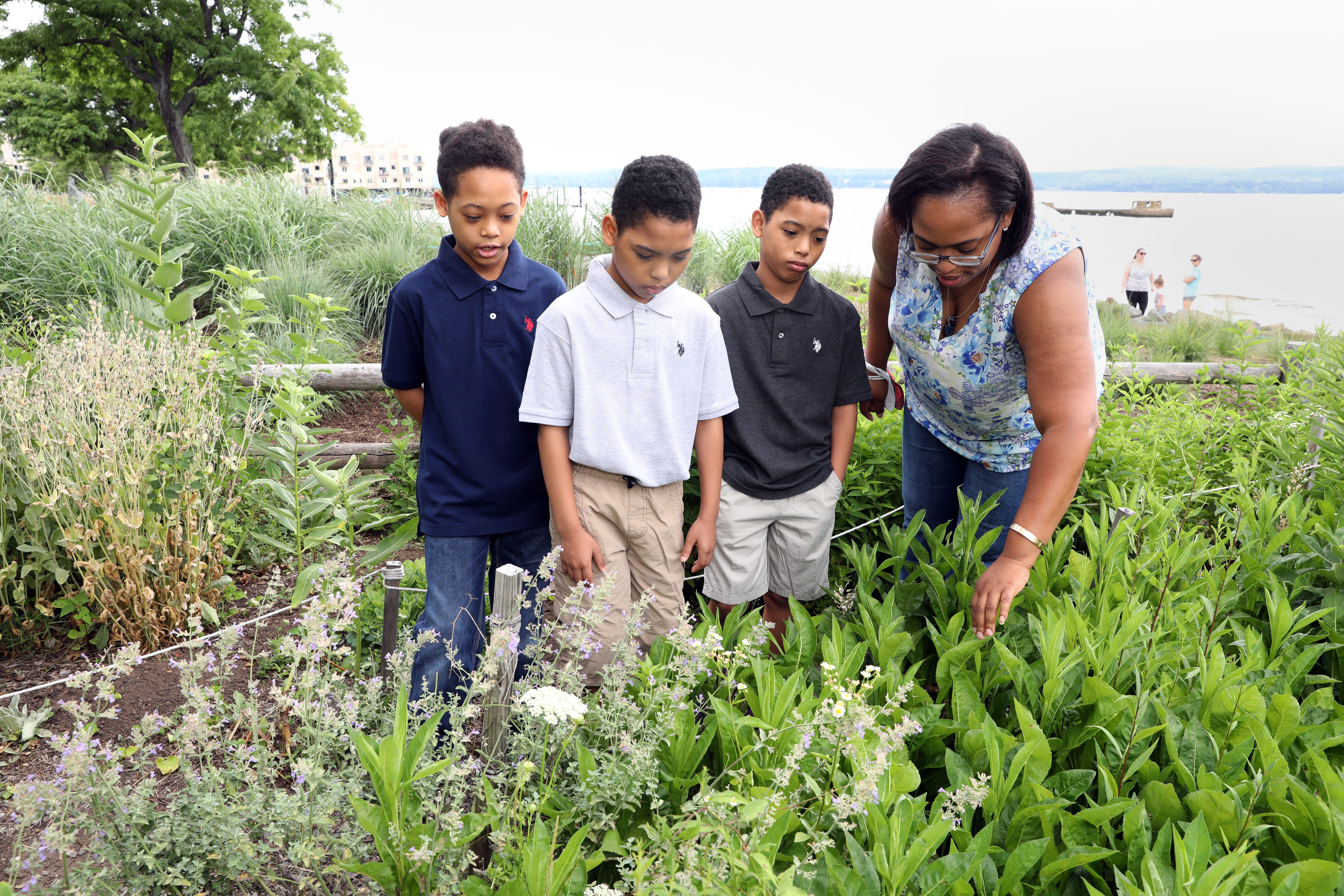 Nathalie Riobe-Taylor and her sons Tristan, 10, left, and 9-year-old twins Tanner, center, and Tyler, look at the flowers in the butterfly garden at Memorial Park in Nyack. Riobe-Taylor was denied an epidural and not getting pain medication, and was told she'd not get her insurance coverage if she left her hospital bed before three days to see her premature babies in a NICU at another hospital.