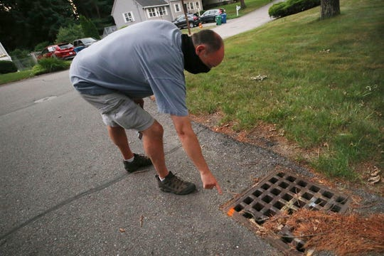 Chris Gagnon, field operations manager for the East Middlesex Mosquito Control Project, points out a paint marker to identify that a storm drain has been treated for mosquito control on Wednesday, July 8, 2020, prior to driving through a neighborhood in Burlington, Mass.