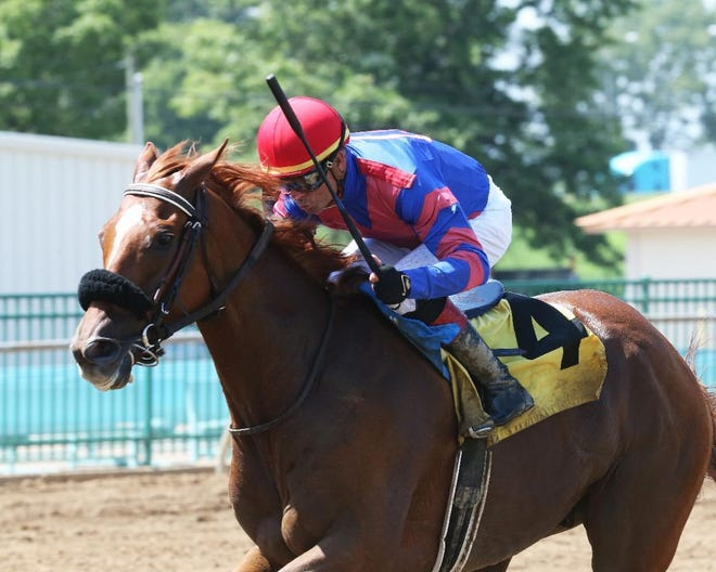 Former Kentucky Derby hopeful won the first back-to-back starts of his career Sunday at Ellis Park with Corey Lanerie aboard.