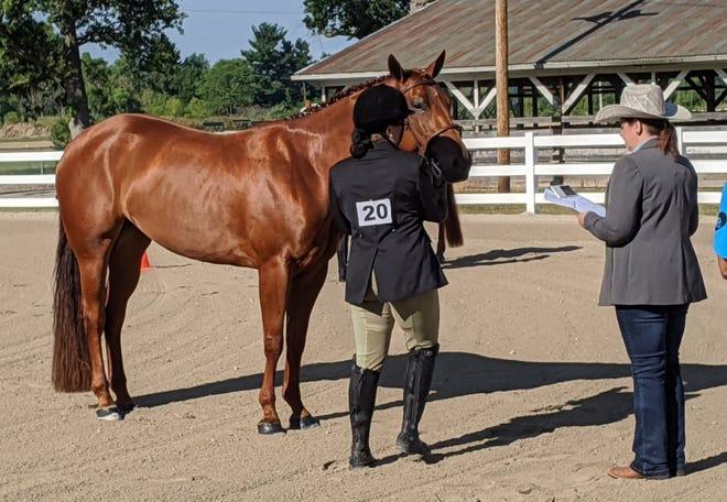 Macie Morris with horse Karen are judges on coat.