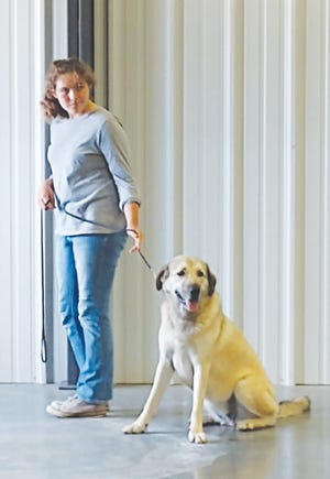 Megan Matulka and her dog compete in obedience at the 2020 Pratt County Fair 4-H dog show on Friday, July 17 in Pratt. Fair events are not open to the public this year.