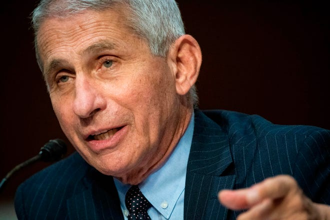 Anthony Fauci, director of the National Institute of Allergy and Infectious Diseases, speaks during a Senate Health, Education, Labor and Pensions Committee hearing in Washington, DC, on June 30, 2020. - Fauci and other government health officials updated the Senate on how to safely get back to school and the workplace during the COVID-19 pandemic. (Photo by Al Drago / various sources / AFP) (Photo by AL DRAGO/AFP via Getty Images)