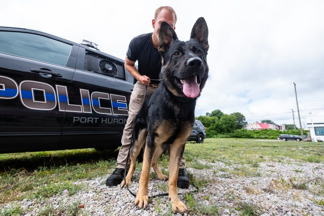 Port Huron Police K-9 officer Andrew Teichow holds Zeke, the department's newest police dog Thursday, July 23, 2020. Zeke is being trained in narcotics detection, building searches, missing persons and suspect searches and handler protection.
