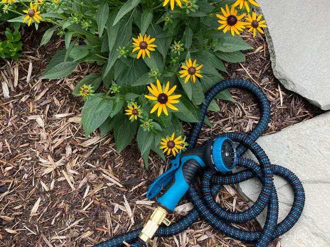 How romantic — the hose, not the flowers.