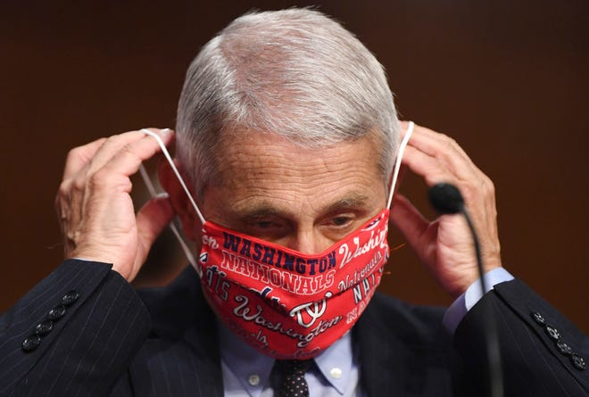 Dr. Anthony Fauci wearing a Washington Nationals themed mask at a Senate committee hearing.