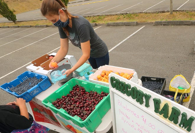 Erin Sauerwein weighs peaches for customers visiting the Gregory Farm table at the Bremerton Farmers Market located in Pendergast Park on Thursday, July 23, 2020. The Silverdale based farm partners with Johnson Orchards in Yakima to bring the fresh fruit to the market.