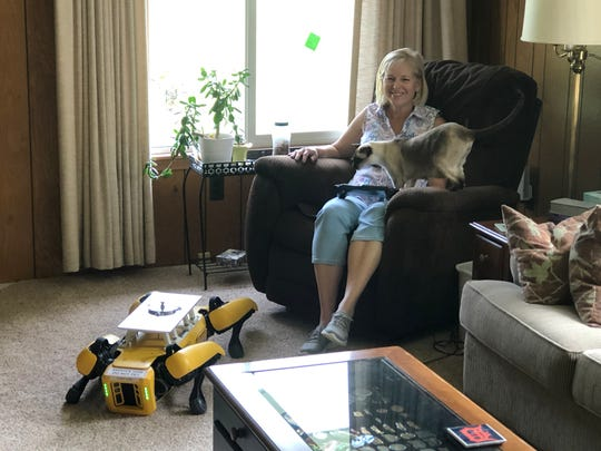 Paula Wiebelhaus is training Fluffy the robotic dog at home for Ford during the pandemic. Her cats are wary of the machine.