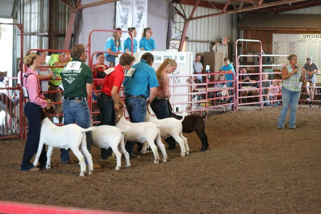 Julie Morrow, right, of Stoney Point Farm in New Concord, commended everyone who participated in the goat show on Thursday at the Ottawa County Junior Fair, praising their knowledge, courtesy and eye contact.