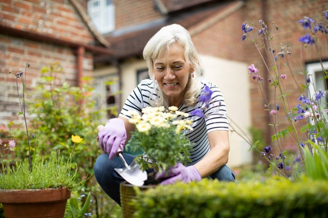 Even everyday activities like gardening can become dangerous during the summer for seniors who have certain health conditions.