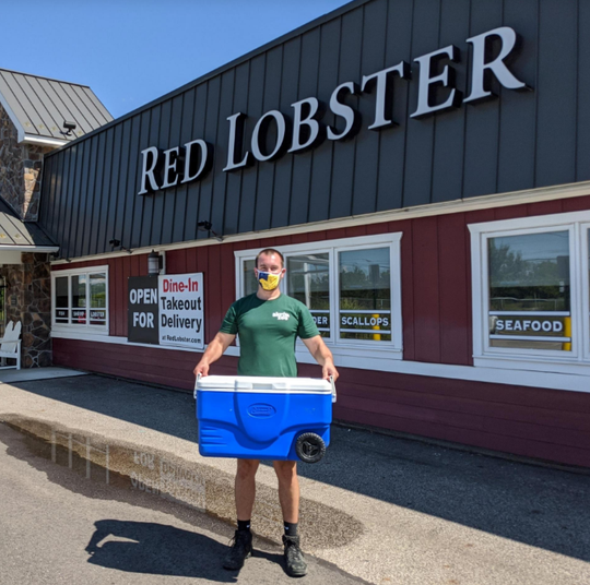 Akron Zoo owner Scott Heidler picks up a rare blue American lobster from the Red Lobster restaurant at Cuyahoga Falls.