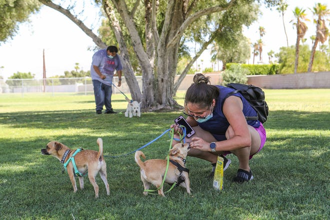 Stacey Avalos and her brother Juan Avalos enjoy the outdoors with their dogs at Victoria Park in Palm Springs, July 26, 2020.