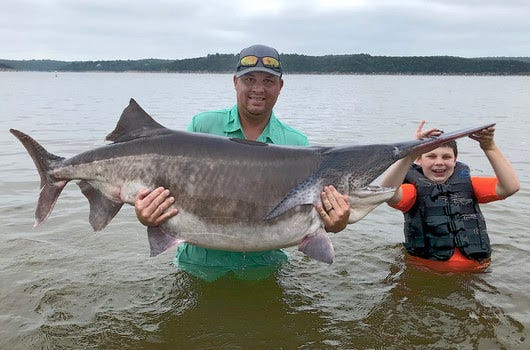 Cody James Watters of Ochelata, with help from son Stetson, 9, holds his rod-and-reel world-record paddlefish that he snagged July 23 at Keystone Lake. (Photo by Eric Brennan/ODWC)