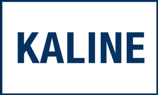Detroit Tigers' flag to honor Al Kaline.