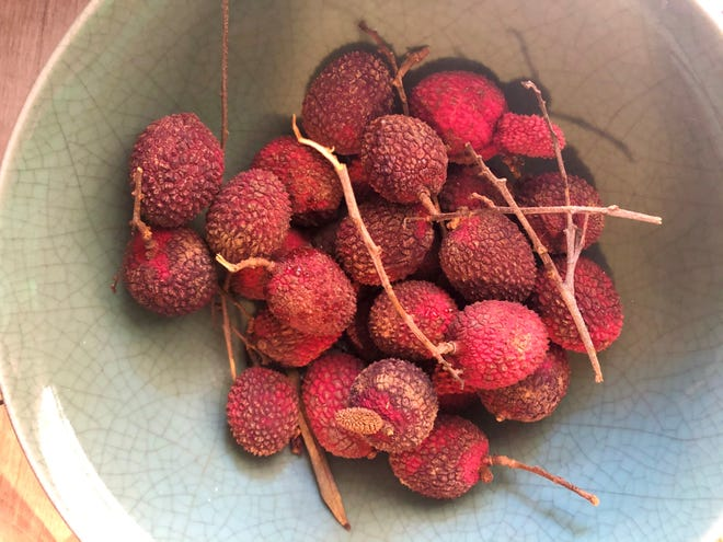 Lychees grow from mid-June to mid-July in Florida