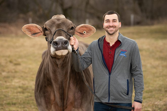 Mitch Kappelman of Manitowoc with one of his Brown Swiss cows. Mitch was recently awarded with the 2020 Young Breeder Award through the Brown Swiss Cattle Breeders' Association.