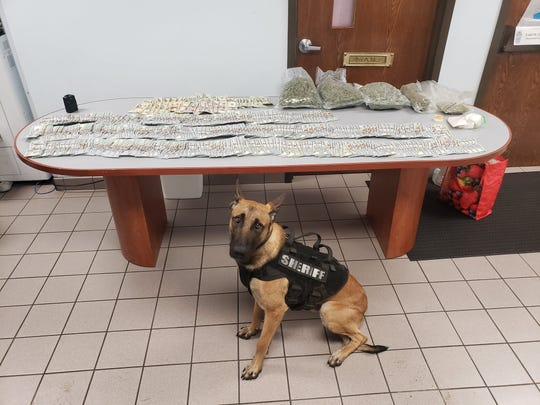 Ruger, the Menominee County sheriff K-9, helped police locate several pounds of marijuana and more than $35,000 in cash during a traffic stop early Sunday morning, July 26, 2020.