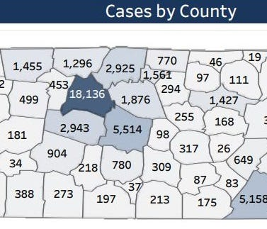 Screenshot of the COVID cases by county map provided by the state Department of Health as of July 28.