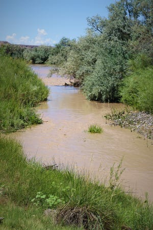 The San Juan River, muddy with runoff from recent monsoon rains, flows near Westland Dog Park in Farmington on July 28, 2020.