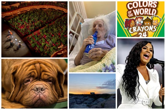 There are some good things that happened in 2020, like the woman who celebrated COVID-19 recovery with a beer or the new line of crayons from Crayola in a range skin tones. We found 100 positive stories.